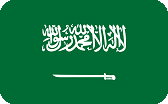 SAUDI_ARABIA_PREMIUM logo